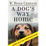 Psí domov - Cameron Bruce W.