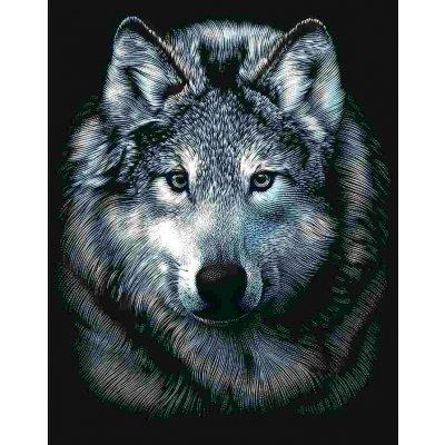 Vyškrabovací obrázek Vlk