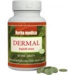 Herba medica Dermal při kožních potížích 100 tbl.