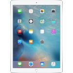 Apple iPad Pro Wi-Fi 256GB ML0U2FD/A