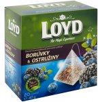 Loyd pyramids ostružiny borůvky ovocný čaj 50 x 2 g