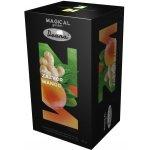 Drana Magical Garden zázvor a mango 20 x 2.5 g
