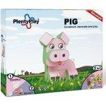 Plenty Play Pig