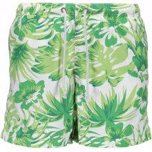 Pánské šortky Gant Zelená