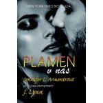 Plamen v nás - Armentrout, Jennifer L. / Lynn J.