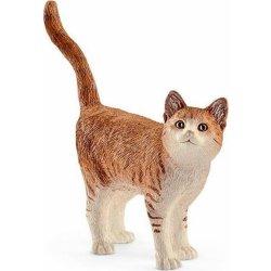 Rozkošná chlupatá tlustá kočka se dostala do několika nejznámějších.