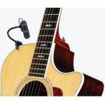DPA 4099 Guitar
