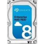 Seagate 8000GB, ST8000NE0001