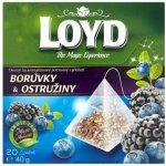 Loyd pyramida Borůvky a Ostružiny 20 x 2 g