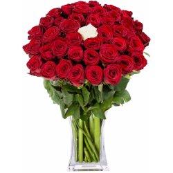 červené růže a 1 bílá