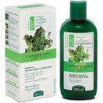 Helan šampon Capelvenere na mastné vlasy 200 ml