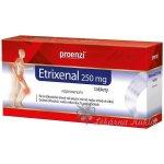 Etrixenal 250mg tablety por.tbl.nob. 20 x 250mg