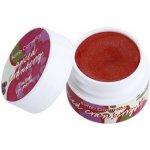 Bomb Cosmetics Spiced Cranberry balzám na rty se třpytkami 9 ml