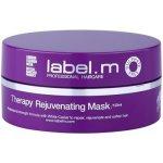 label.m Therapy Age-Defying revitalizační maska na vlasy (Recovery Mask) 120 ml