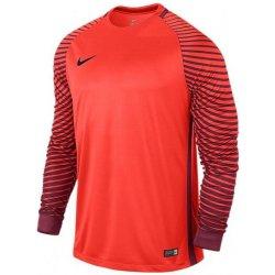 0418c28a3693b Dres s dlouhým rukávem Nike LS GARDIEN JSY 725882-671