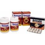 Dacom Pharma Koenzym Q10 s hořčíkem 120 tbl. + Artrofit 10 tbl.