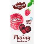 Royal Pharma Maliny sušené mrazem 20 g