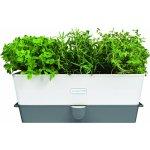 Cole & Mason samozavlažovací truhlík na bylinky na 3 květináče H105349 DKB Household UK Limited