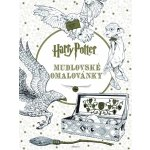 Harry Potter Colouring Book - Warner Brothers - Paperback