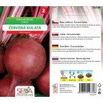 Řepa salátová Červená kulatá Osiva Moravia