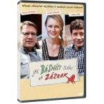 Jak básníci čekají na zázrak DVD