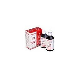 Hyalgel Collagen MAXX Vánoce 2018 2 x 500 ml