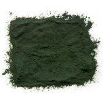Cocowoods Spirulina Bio 100 g