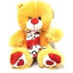 Valentýnský Medvěd Petříček 30 cm červená