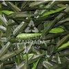 BAMBOO, rozměr role - 1,0x3,0 m (Umělý živý plot - bambus)