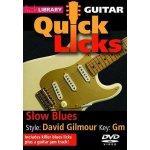 Lick Library: Quick Licks - Slow Blues David Gilmour (DVD) (video škola hry na kytaru)