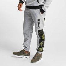 Dangerous DNGRS kalhoty pánské Sweat Pant Health in gray