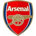 Puma Arsenal Home Socks