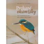 Prchavé okamžiky přírody - Fotoaparátem od jara do zimy - kolektiv autorů
