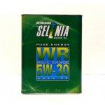 Selénia WR Diesel Pure Energy 5W-30, 2 l