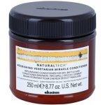 DAVINES NATURALTECH Nourishing Vegetarian Miracle Conditioner 250 ml