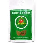Exotic Herbs Guarana prášek XL balení 600 g