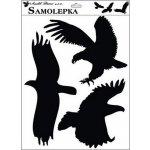 Anděl Samolepka siluety Typ: 1 ptáci 429, 42x30cm