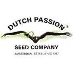 Dutch Passion Auto Night Queen 3 ks