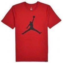 Nike Jordan M JSW TEE ICONIC JUMPMAN