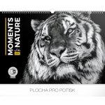 Kalendář nástěnný 2019 - Momenty v přírodě, 48 x 33 cm