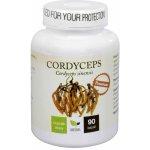 Natural Medicaments Cordyceps Premium 90 cps.