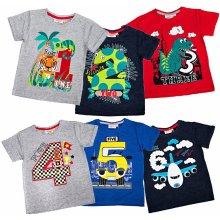 Narozeninové tričko dětské pro kluky 1-6 MiniKidz Velikost: jednička