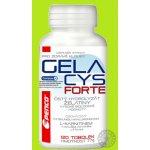 Penco Gelacys Forte 120 tob