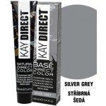 Kay Direct barva Silver Grey 100 ml