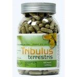 4fitness Tribulus terrestris 300 tablet