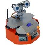 Dr. Robot Sputnik WiFi Mobile Development Platform (w/ Head)
