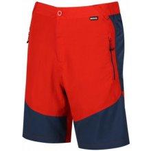 b4552b60ace8 Regatta Pánské šortky Sungari shorts RMJ207 šedá černé