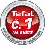 Tefal GV 8976