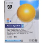 POWER SYSTEM POWER GYMBALL 75 cm