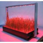 Parus Atum Farm M30 PRO - LED truhlík na bylinky